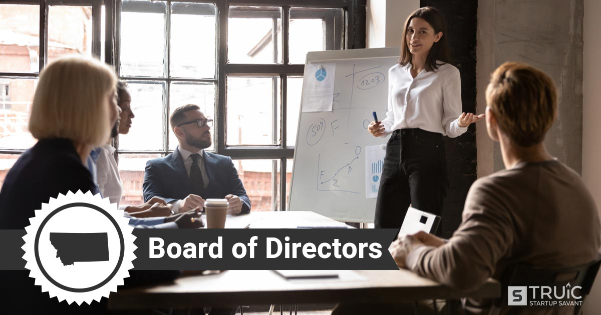 Woman presenting to a board of directors
