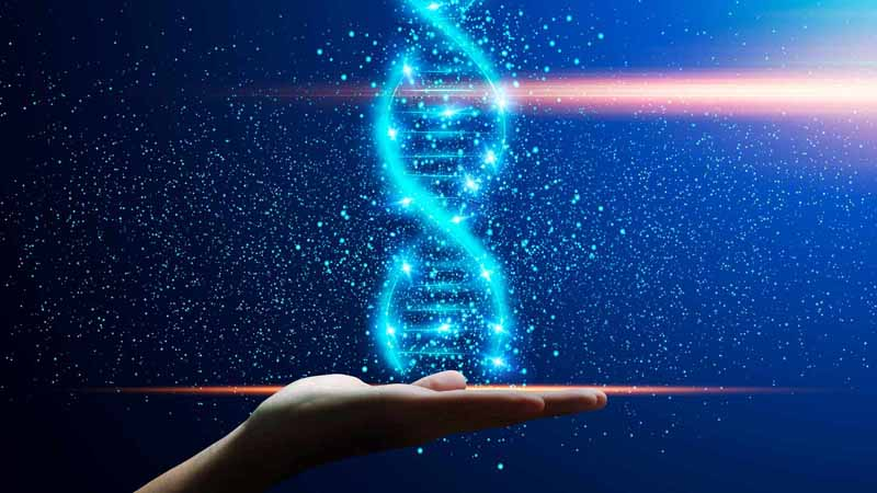A hand holding up a digital DNA helix.