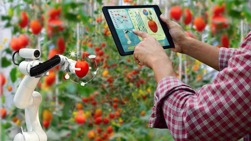 Farmer using a tablet to direct agriculture technology.