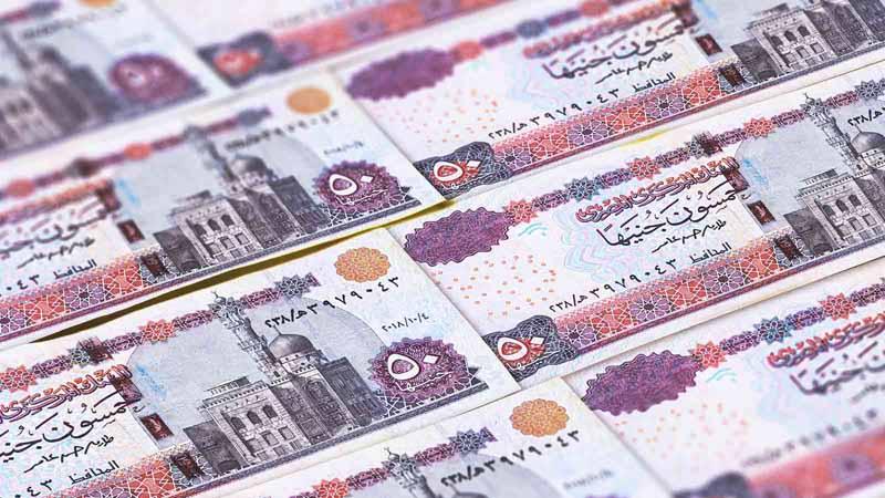 Egyptian pounds.