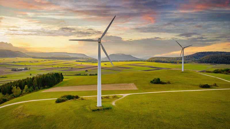 A windmill farm.