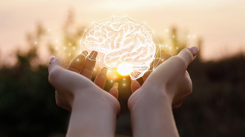Hands holding a digital brain.