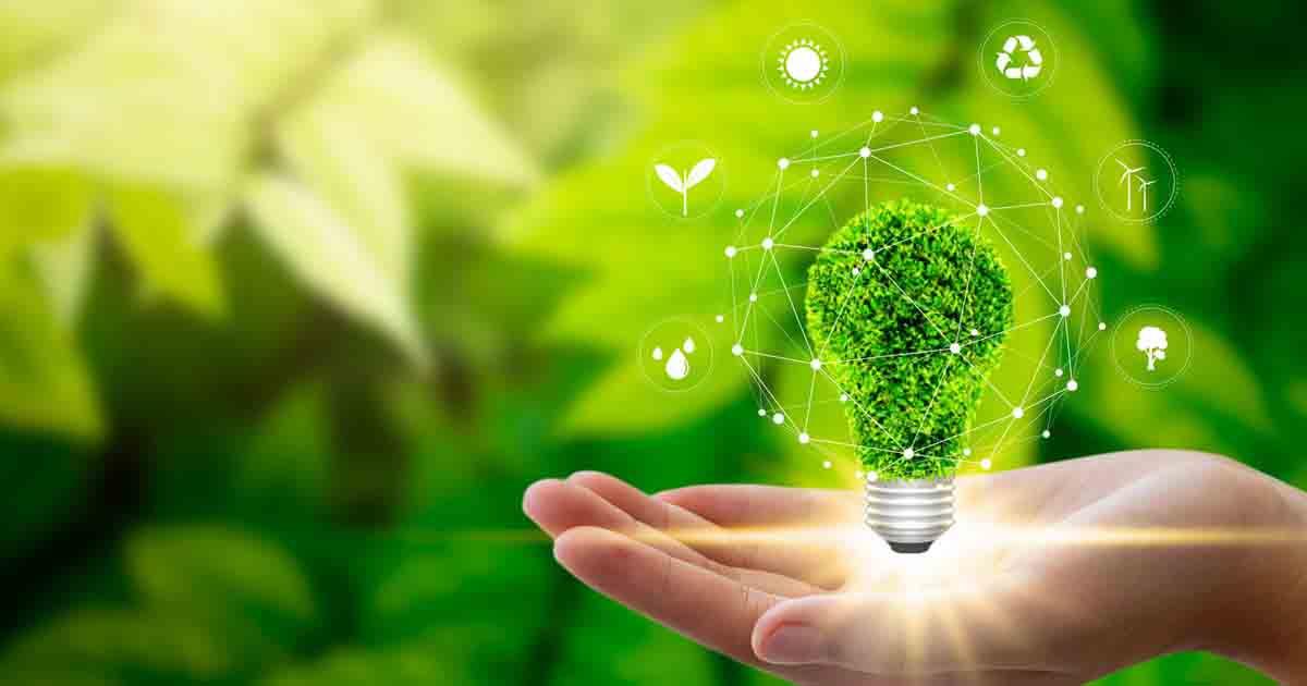 A hand holding a green, leafy lightbulb
