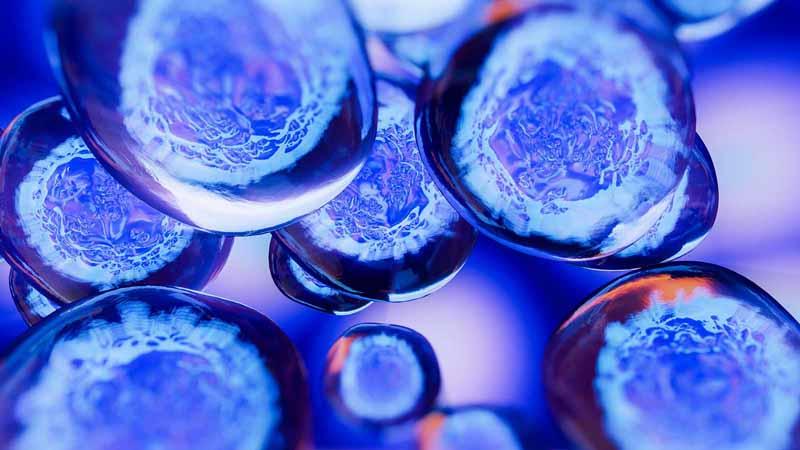 3D illustration of embryonic stem cells.