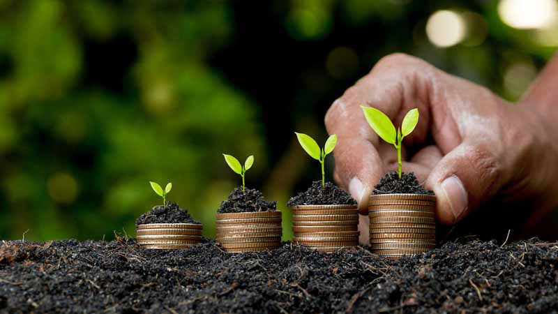 Growing stacks of coins with plant sprouts on top.