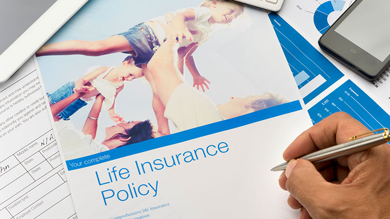 Life insurance brochure.