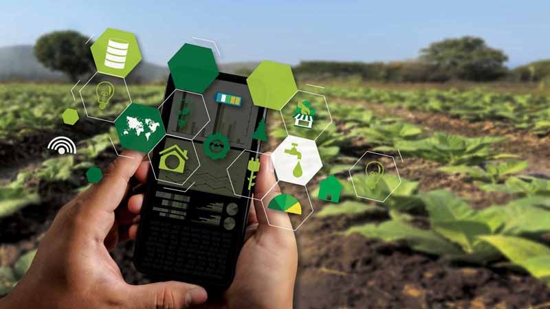 Agriculture technology concept.