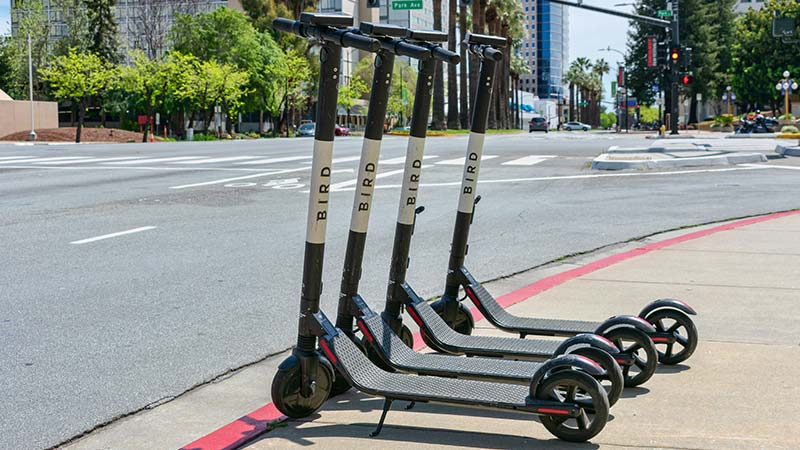 Bird electric scooters.