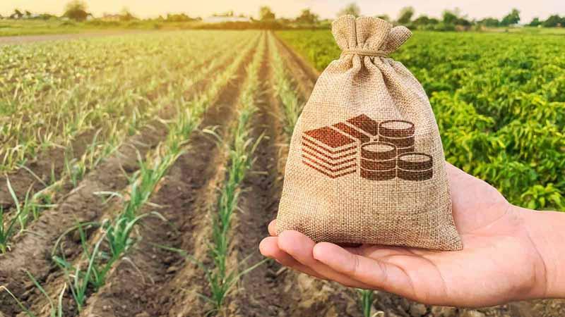 Farmer holding a money bag on a farm.