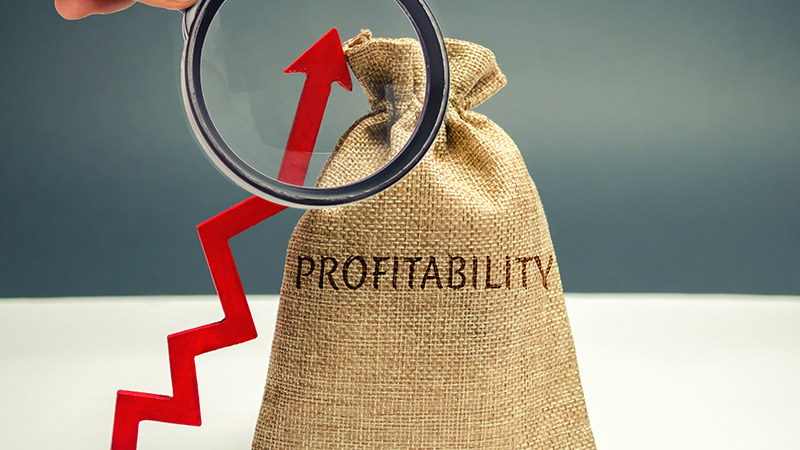 Bag with the word 'profitabiliy' next to an upward trending line.