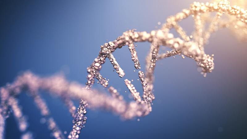 3D rendering of a DNA strand.