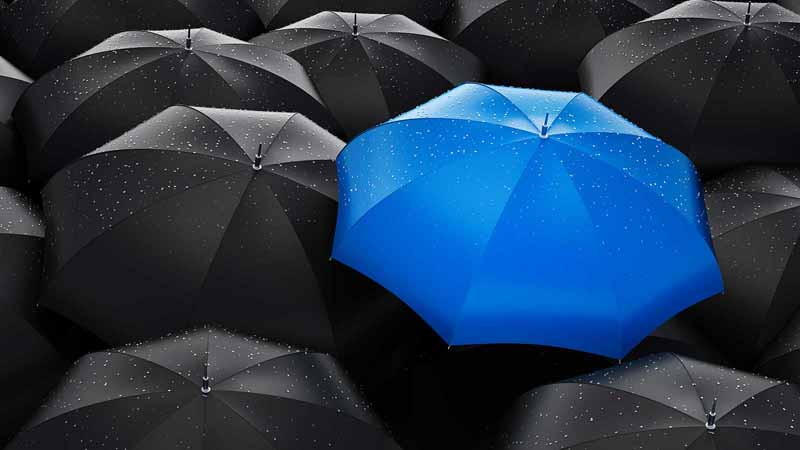 Group of black umbrellas with a blue one in the middle.